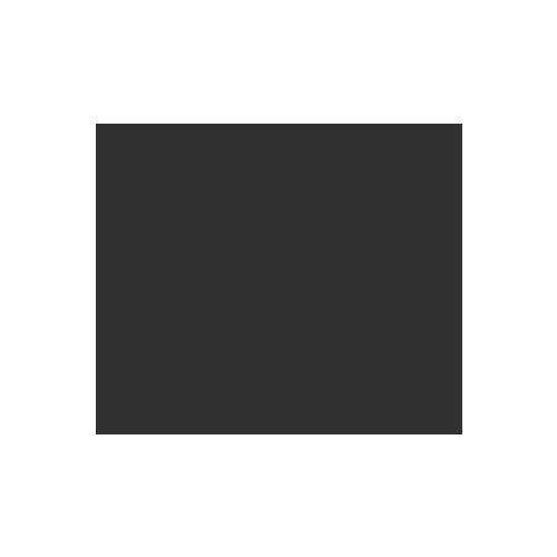 Crawler Cranes Rental